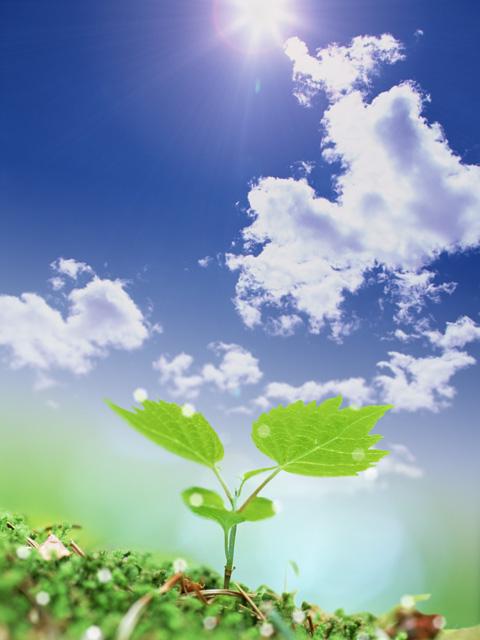 酸素が巡り、むくみや冷え性の改善、デトックス効果も期待できます。